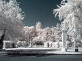 Vdnkh territory infra red photo trees and flowerbeds on of complex Stock Photos