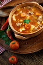 Veal stew delicious soup with meat and vegetables on wood Royalty Free Stock Images