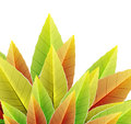 Vector abstract autumn leaf background Stock Photos