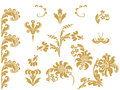 Vector abstract gold set flowers elements design Royalty Free Stock Photo