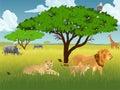 Vector african savannah with lions, rhino, girrafe, vulture, zebra and heron