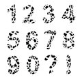 Vector alphabet numbers trendy leopard pattern exclamation and question mark isolated elements Royalty Free Stock Photos