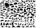 Vektor zvířata