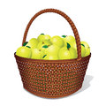 Vector Apple Basket Stock Image