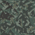 Vector army camouflage background woodland green Royalty Free Stock Image