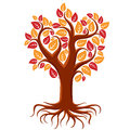 Vector art illustration of branchy autumn tree with strong roots