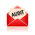 Vector audit symbol Royalty Free Stock Photo