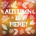 Autumn is here. Vector illustration