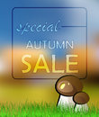 Vector autumn card sale