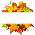 Vector Autumn Frame With Fall ...