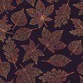 Vector autumn seamless pattern with oak, poplar, beech, maple, aspen and horse chestnut leaves outline on dark background
