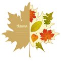 Vector autumnal maple leaf background with autumn label design season backdrop autumn template Royalty Free Stock Photography