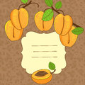 Vector background with apricot Royalty Free Stock Photo