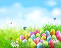 Vector background. Easter eggs in green grass with white flowers