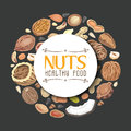 Vector background with nuts arranged in a circle Royalty Free Stock Photo