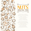 Vector background with nuts arranged vertically Royalty Free Stock Photo