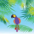 Vector background with palm trees and parrot Stock Photos