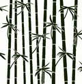 vector bamboo shoots