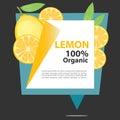 Vector Banner Lemon Organic.