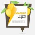 Vector Banner Mango Organic.