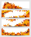 Vector banners with orange pumpkins and autumn leaves. Royalty Free Stock Photo