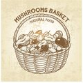 Vector basket with edible mushrooms. Realistic sketch of natural forest food, outline, retro design. Royalty Free Stock Photo