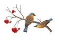 Vector Birds on Branch