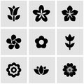 Vector black flowers icon set Royalty Free Stock Photo