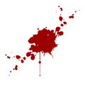 Vector blood splatter isolated. illustration design