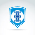 Vector blue shield with dna molecules spiral dna analysis labor laboratory symbol genes sign Stock Images