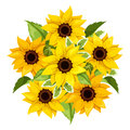 Vector bouquet of sunflowers. Vector illustration. Royalty Free Stock Photo