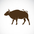 Vector of a bull on a white background.