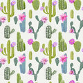 Vector Cactus Background. Seamless Pattern. Exotic Plant Royalty Free Stock Photo