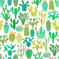 Vector cactus plant seamless pattern. Cacti flower background, print Royalty Free Stock Photo