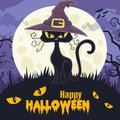 Halloween background with witch-hat cats and halloween night views