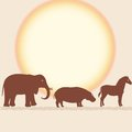 Vector card with african animals silhouettes over sun Royalty Free Stock Photos