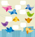 Vector card with birds and speech bubbles Royalty Free Stock Image