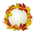 Vector card with colorful autumn leaves and white banner Royalty Free Stock Photo
