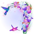 Vector card with iris flowers and hummingbird holidays bright multicolored hummingbirds Stock Photo