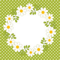 Vector Card Template with a Floral Wreath on Polka Dot Background. Vector Summer Wreath with Daisy. Royalty Free Stock Photo