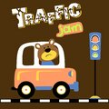 Vector cartoon of bear driving car