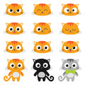 Vector cartoon cat emotions set of different cats with various Royalty Free Stock Photography