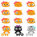 Vector cartoon cat emotions set of different cats with various Stock Photography