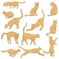 Vector Cartoon Set of Cats. Different Feline Poses and Variation