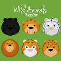 Vector cartoon set of cute wild cats faces isolated a Stock Photos
