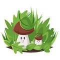 Vector cartoon style illustration of big and small forest mushrooms.