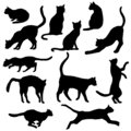 Vector Cats Silhouettes. Black Feline Outline Logos Royalty Free Stock Photo