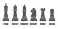 Vector chessmen shapes Royalty Free Stock Photo