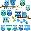 Vector Collection of Boy Baby Shower Themed Owls Royalty Free Stock Photo