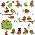 Vector collection of christmas and winter birds with tree branches Stock Photo